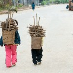 Brother and Sister Carrying Firewood, Mèo Vạc District